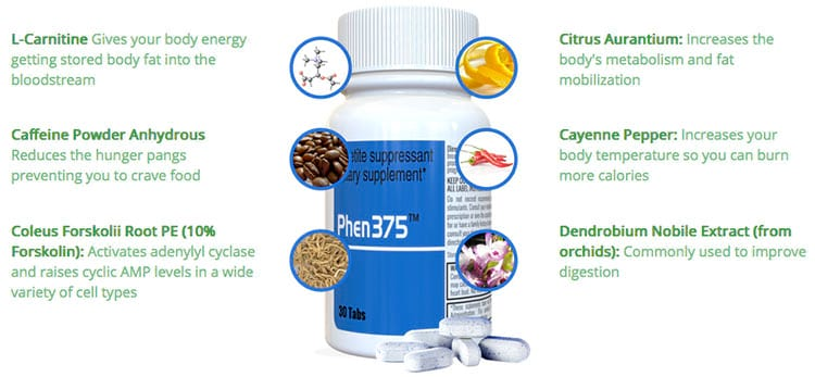Image result for phen375 ingredients
